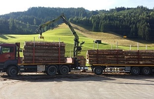 Holztransport LKW